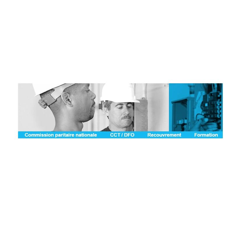 Logo CPN - Commission paritaire nationale de la branche suisse de l'installation électrique et de l'installation de télécommunication